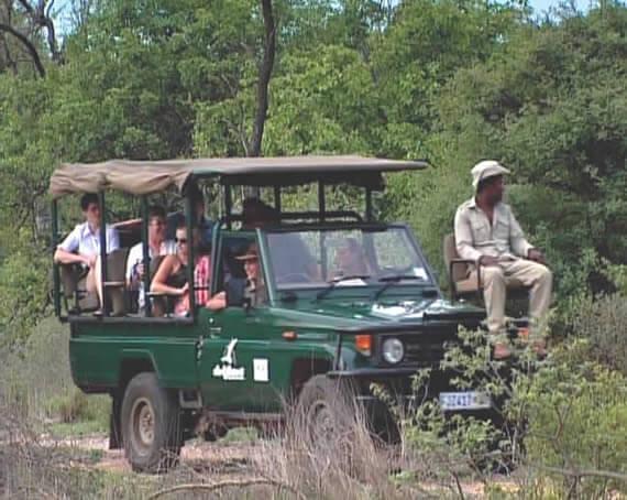 suedafrika-krueger-park-pirschfahrt